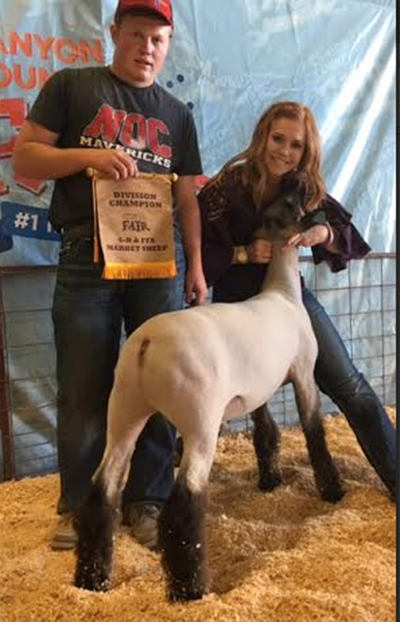 Fisher Club Lambs - Winners