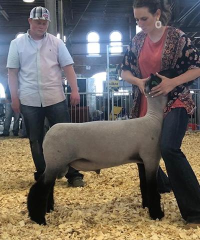Fisher Club Lambs :: Winners